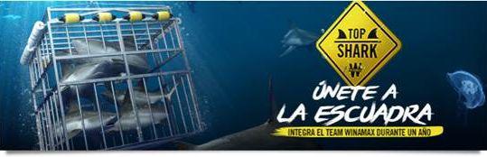 """Top Shark, Semana 2: """"L1m1tLess"""" no tiene límite - top_shark.jpg"""